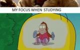 The monkey, it won't stop!